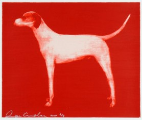 Dog Small Red