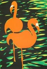 Zonder titel (Flamingo)