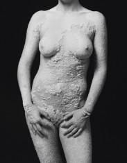 Crystal Body Nicole